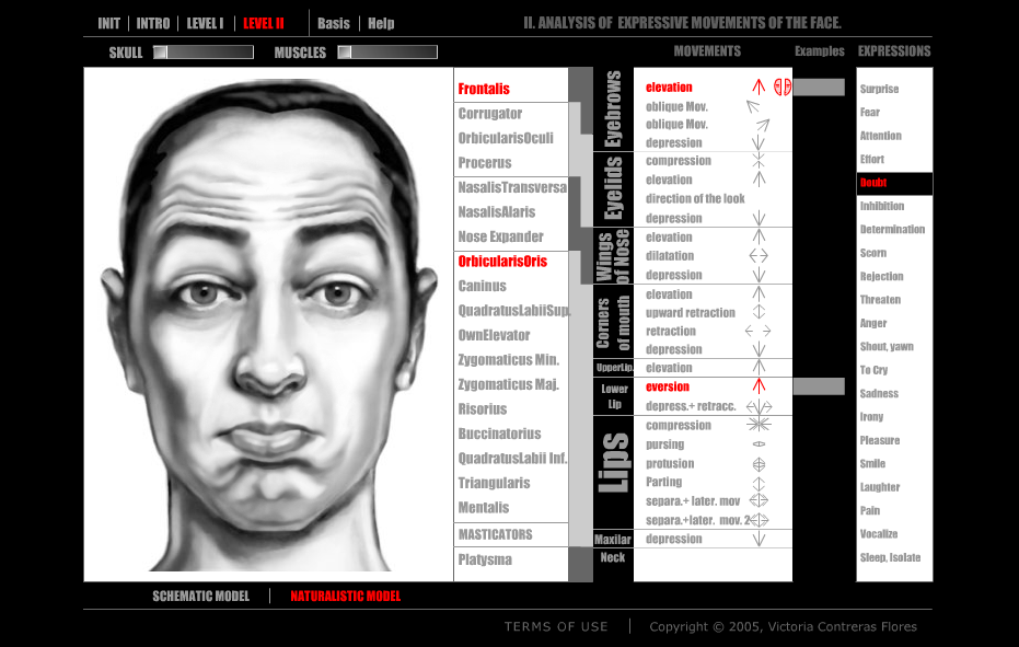 A screenshot of ARTNATOMY by Victoria Contreras Flores.