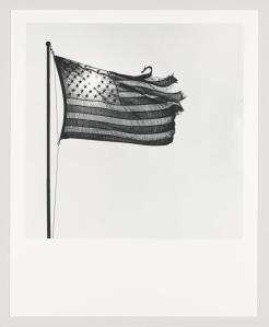Robert Mapplethorpe (1946-1989), American Flag, 1977. Gelatin silver print, 19 3/4 × 15 15/16 in. (50.2 × 40.5 cm). Whitney Museum of American Art, New York.